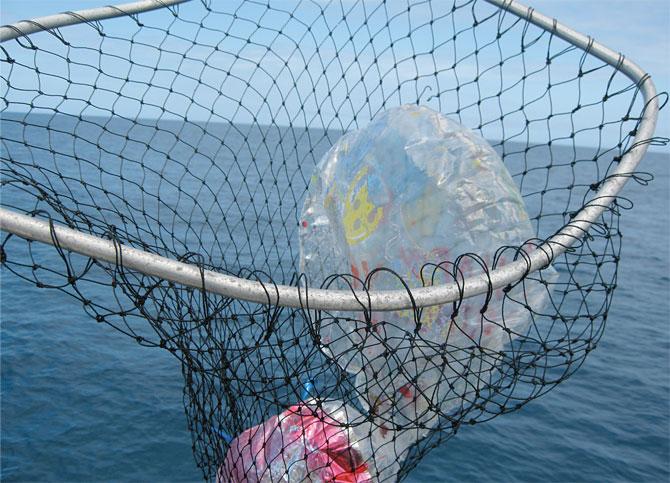 collecting trash while boating: protecting florida marine life