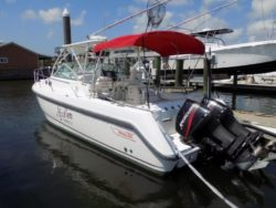28 CONQUEST Boston Whaler's For Sale