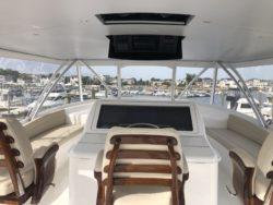 2019 72 Viking Yacht Convertible Goose