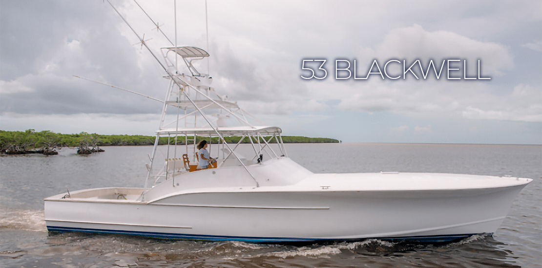 53 Blackwell