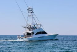 Hot Rod Sportifshing tournament: Orange Beach Billfish Classic