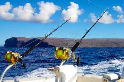sportfishing in Cabo, MX