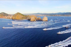 Cabo San Lucas Sportfish Yachts