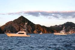 Los Cabos Billfish Toournament