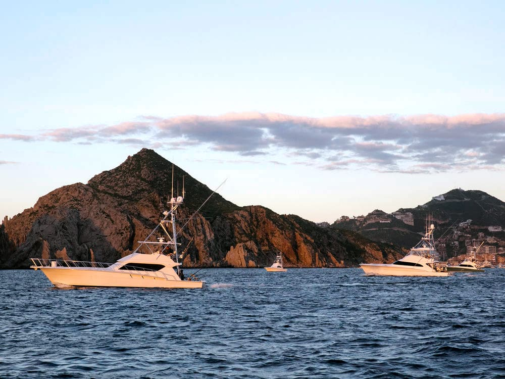 2019 Los Cabos Billfish Tournament